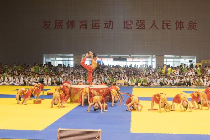 Cerimônia da Desempenho-abertura--A competição amigável de Taekwondo do oitavo copo de GoldenTeam imagem de stock royalty free