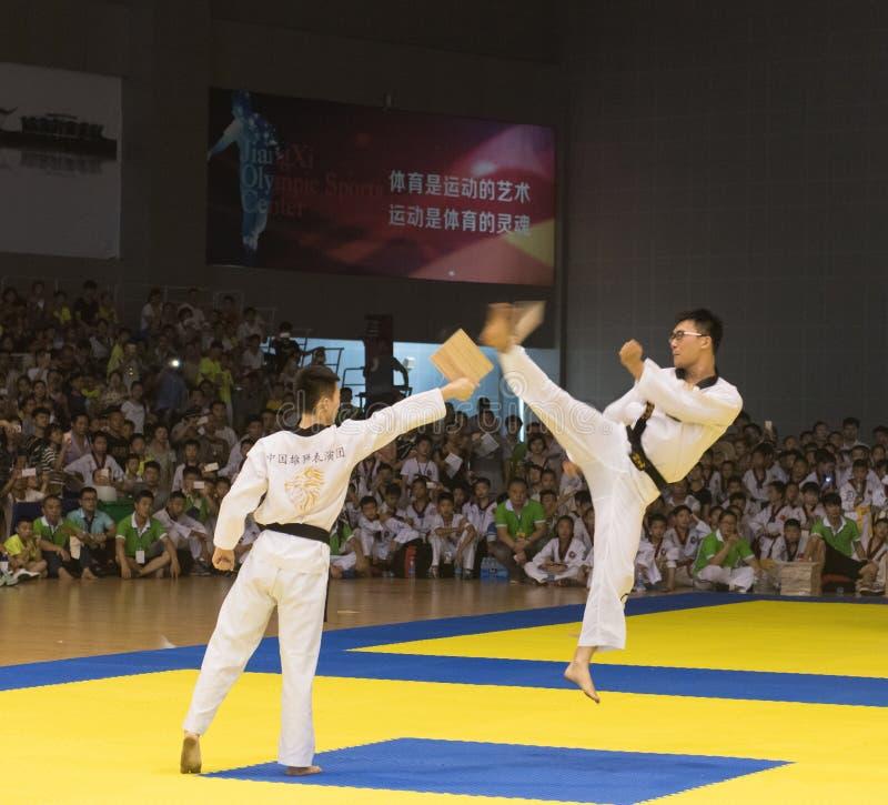 Cerimônia da Desempenho-abertura--A competição amigável de Taekwondo do oitavo copo de GoldenTeam fotos de stock royalty free