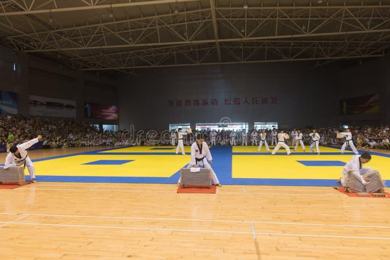 Cerimônia da Desempenho-abertura--A competição amigável de Taekwondo do oitavo copo de GoldenTeam fotografia de stock