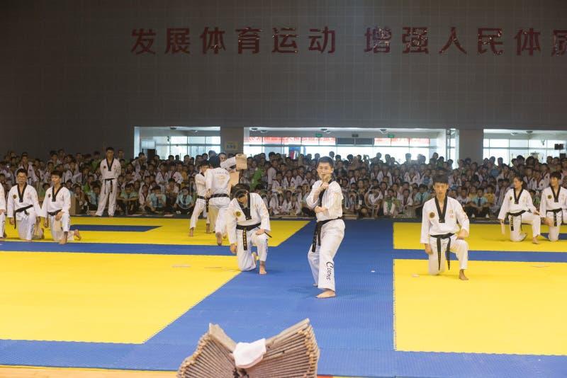 Cerimônia da Desempenho-abertura--A competição amigável de Taekwondo do oitavo copo de GoldenTeam imagens de stock