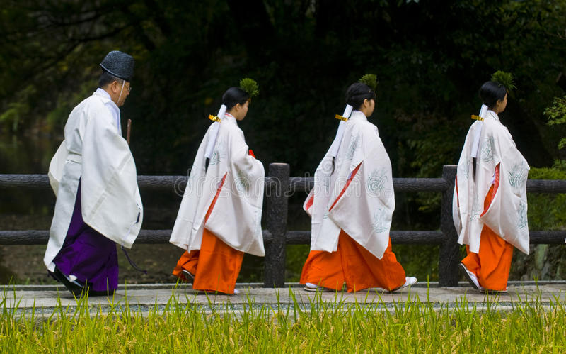 Cerimonia della raccolta del riso immagine stock libera da diritti