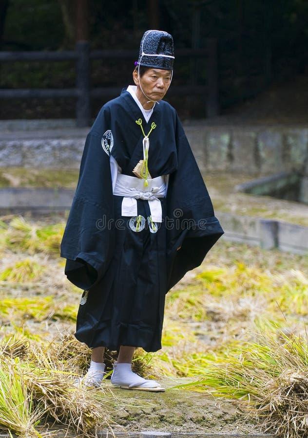 Cerimonia della raccolta del riso fotografia stock libera da diritti