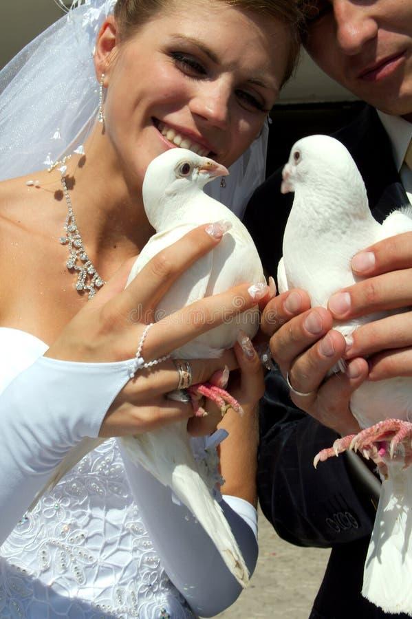 Download Cerimonia nuziale immagine stock. Immagine di vestiti - 3128275