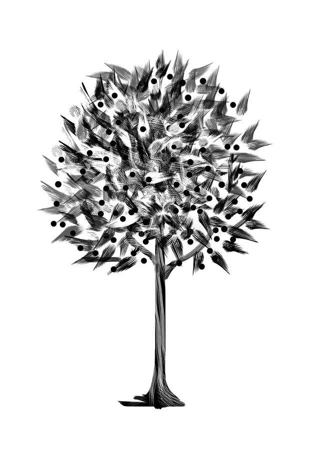 Cerise arbre de dessin sur le fond blanc illustration - Cerise dessin ...