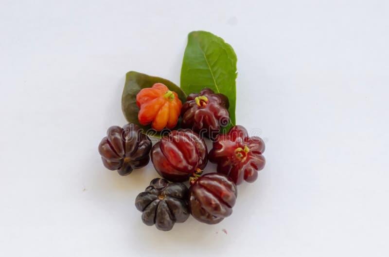Cerises et feuilles de cerise de Cayenne photo libre de droits