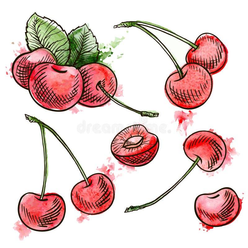 Cerises rouges tirées par la main illustration stock