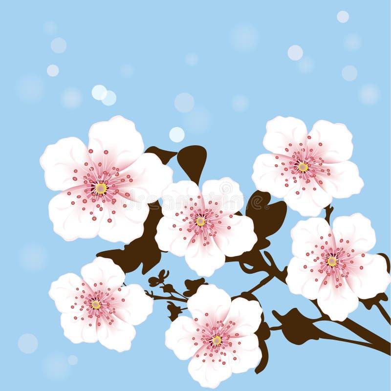 Cerisier illustration libre de droits