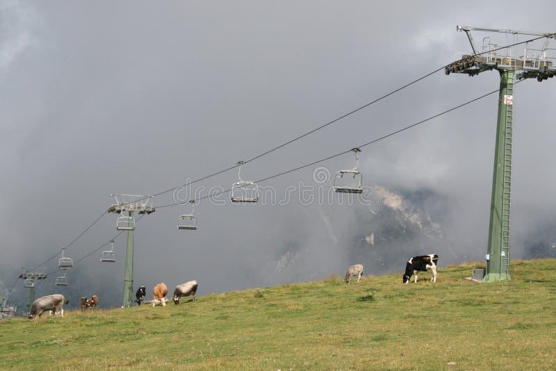 Cermis: Elevación y vacas de silla en nubes imagen de archivo libre de regalías