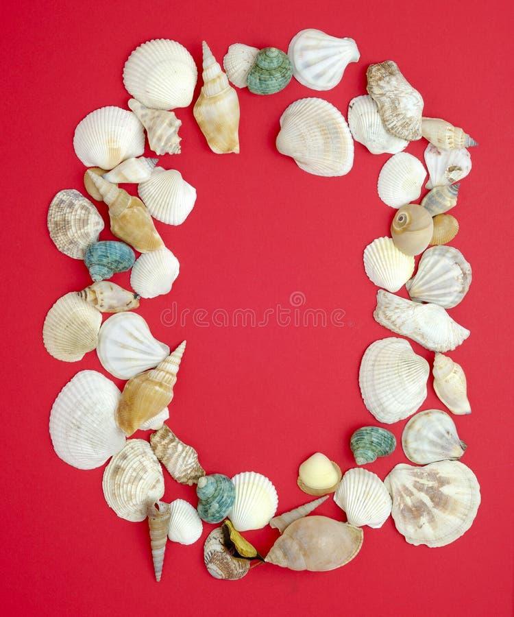 Cero con los shelles del mar imagen de archivo libre de regalías
