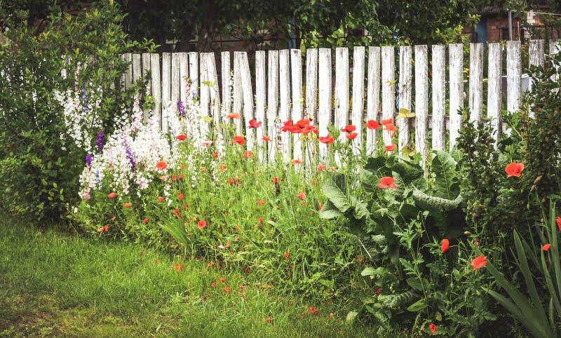Cerque los haces de madera blancos, la hierba verde y las flores rojas imágenes de archivo libres de regalías