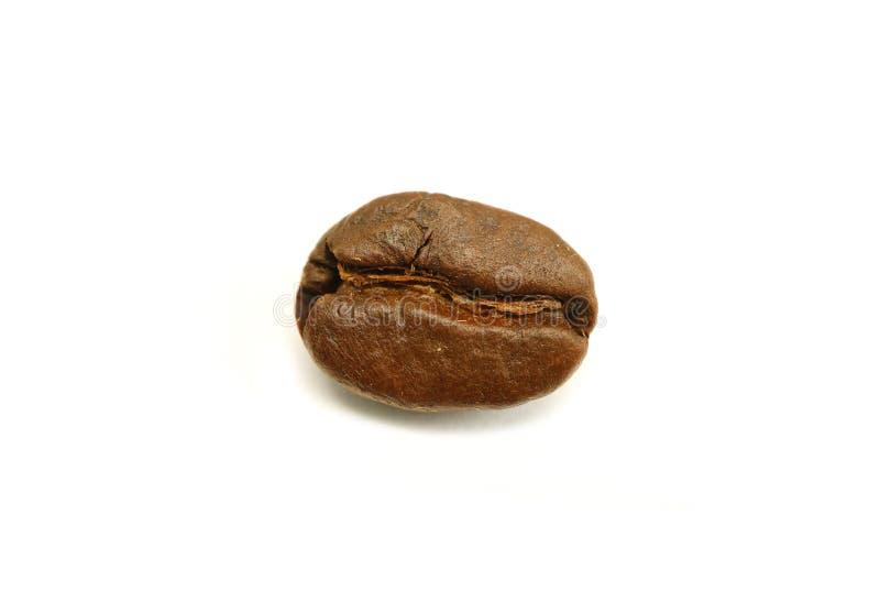 Cerrado encima del café asado Bean Isolated del Arabica en el fondo blanco imagen de archivo
