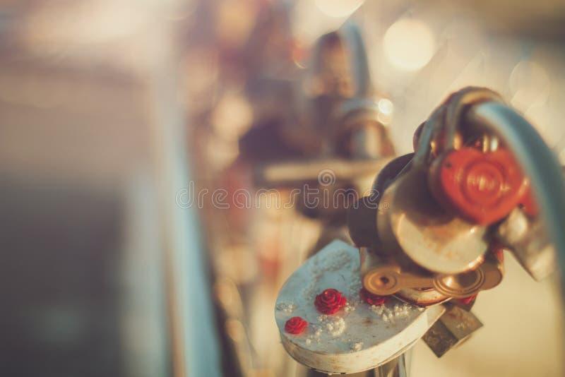 Cerraduras preciosas de la boda fotografía de archivo libre de regalías