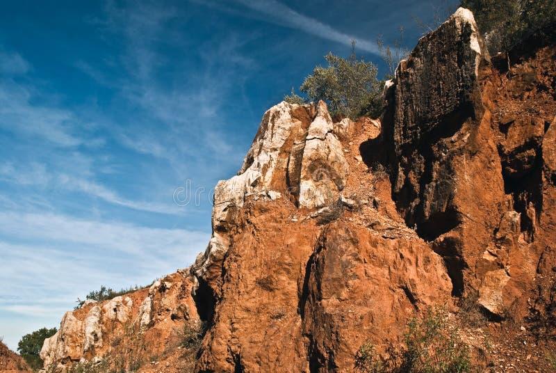 cerro del hierro λικνίζει το δέντρο στοκ φωτογραφίες