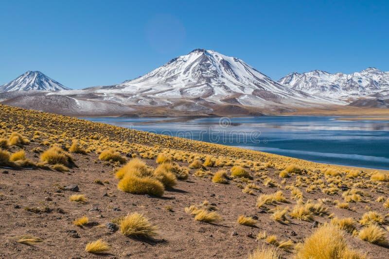Cerro Miscanti, visto dos bancos de Lagunas Miscanti situados no altiplano da região de Antofagasta, no Chile do norte imagens de stock royalty free