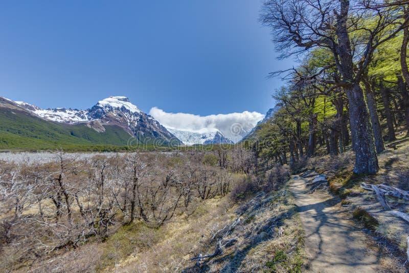 Cerro Torre massiv i Patagonia royaltyfria bilder