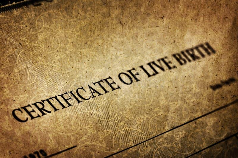 Certificato di nascita per il bambino nato vivo immagini stock