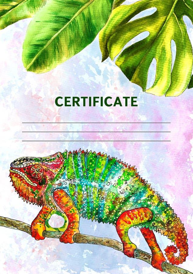 Certifikatdesignen med vattenfärgen målade tropiska sidor Vertikalt format Illustration full-färg kameleont, färgödla, royaltyfri illustrationer