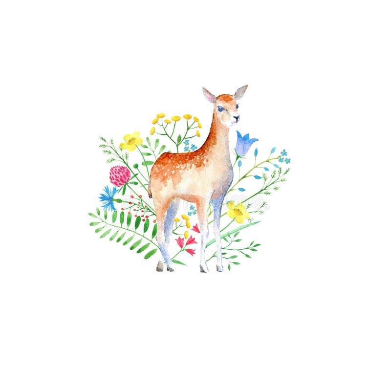 Cervatillo y floral Ciervos del animal salvaje stock de ilustración