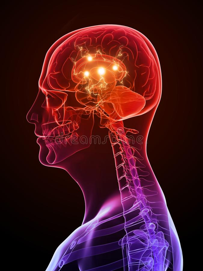 Cerveau actif illustration stock