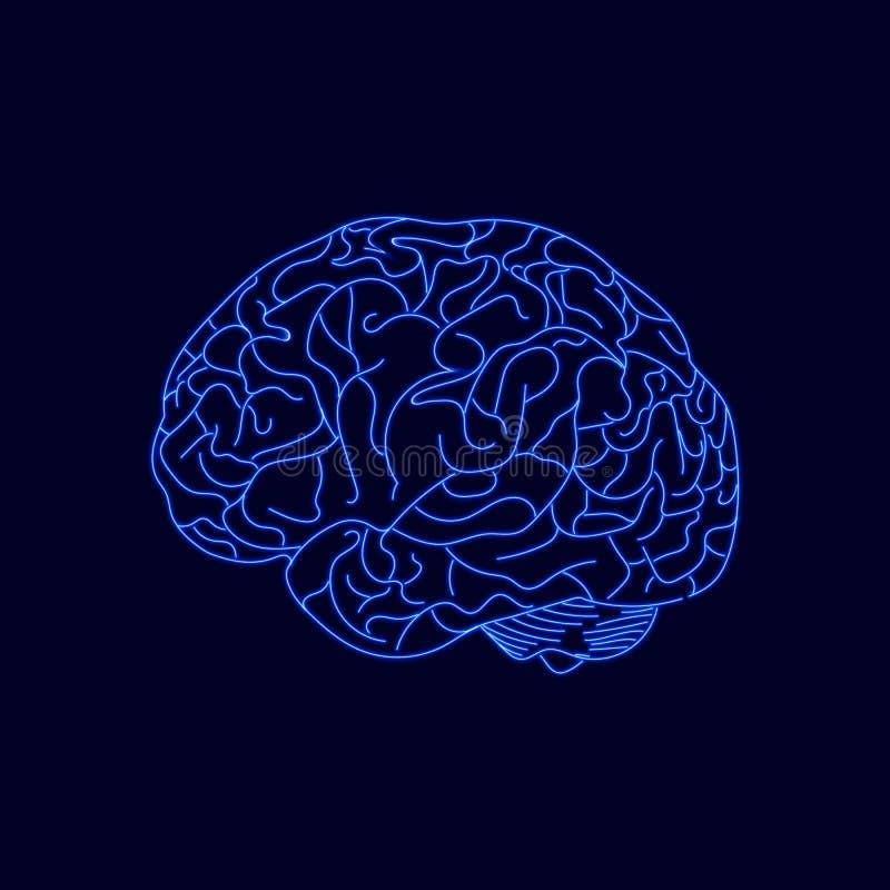 Cerveau au néon de vecteur, Logo Illustration Template, lignes rougeoyantes bleues illustration de vecteur