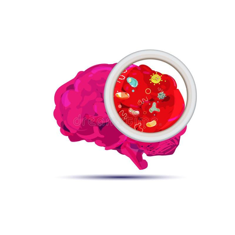 Cerveau avec des bactéries Concept de Brain Infection - illustration stock