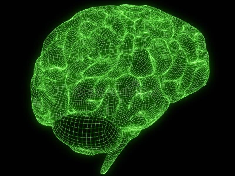 Cerveau de fil illustration de vecteur