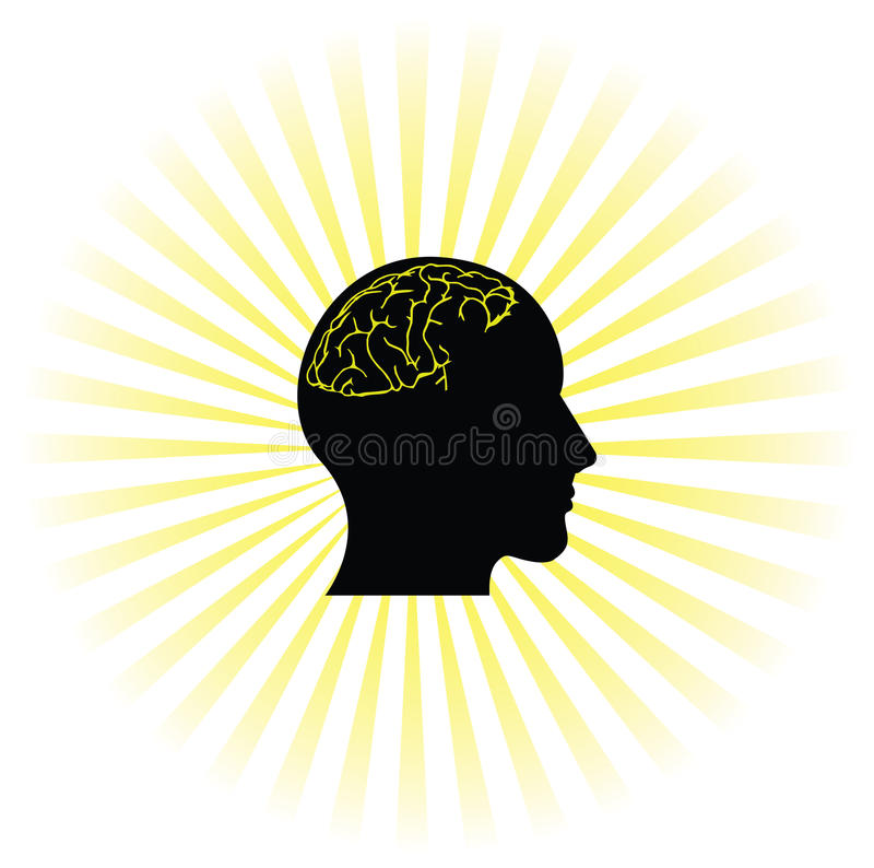 Cerveau fonctionnant illustration stock