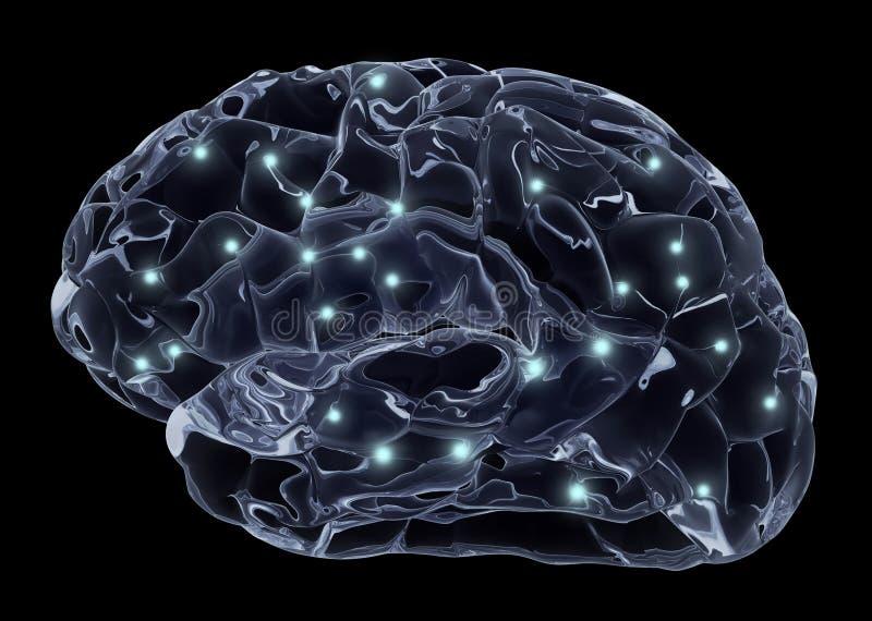 Cerveau humain et neurones illustration de vecteur