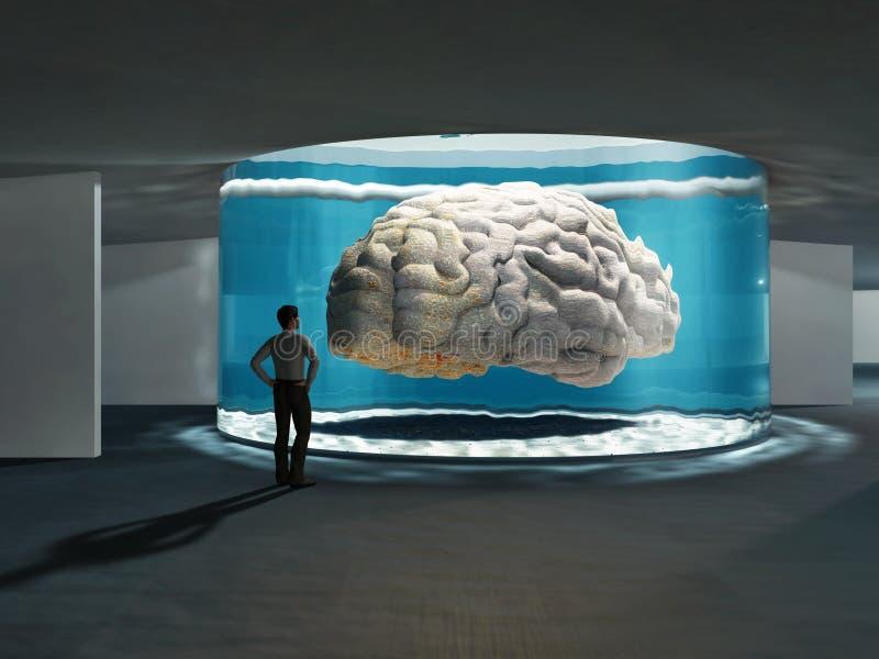 Cerveau superbe illustration libre de droits