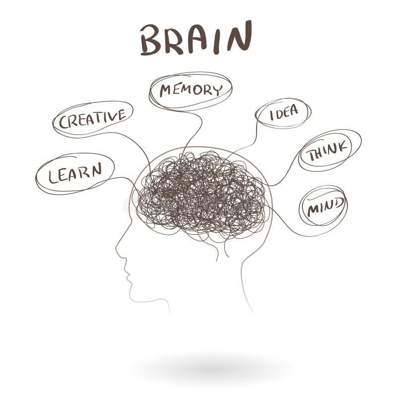 Cerveau, un concept humain de pensée Vecteur illustration libre de droits