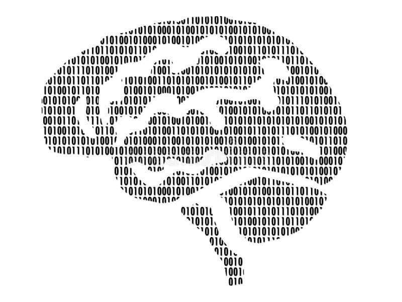 Cerveaux illustration libre de droits