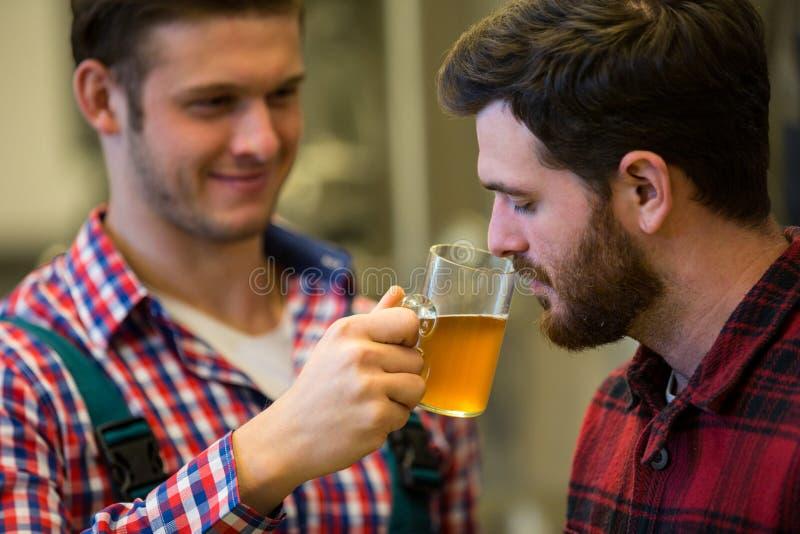 Cerveceros que huelen la cerveza imágenes de archivo libres de regalías