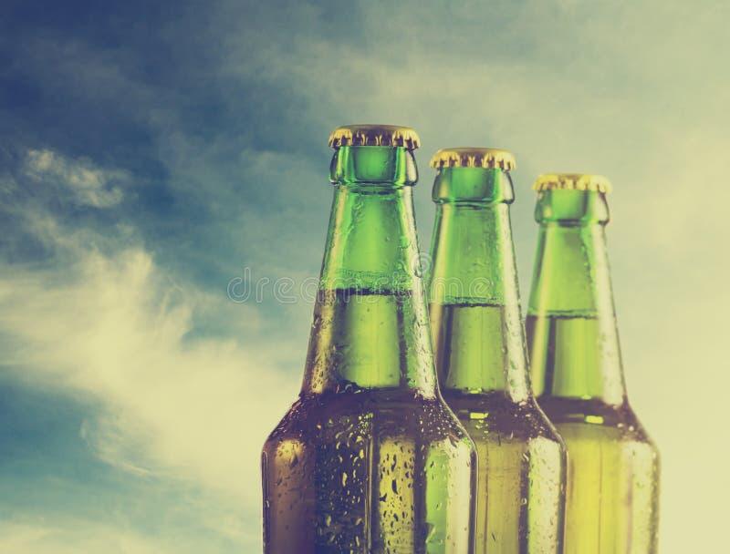 Cerveja imagem de stock