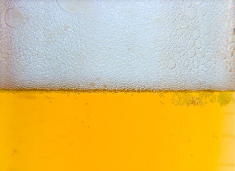 Cerveja 7 novos imagens de stock