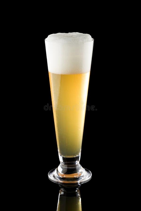 Cerveja clara no vidro alto imagens de stock royalty free