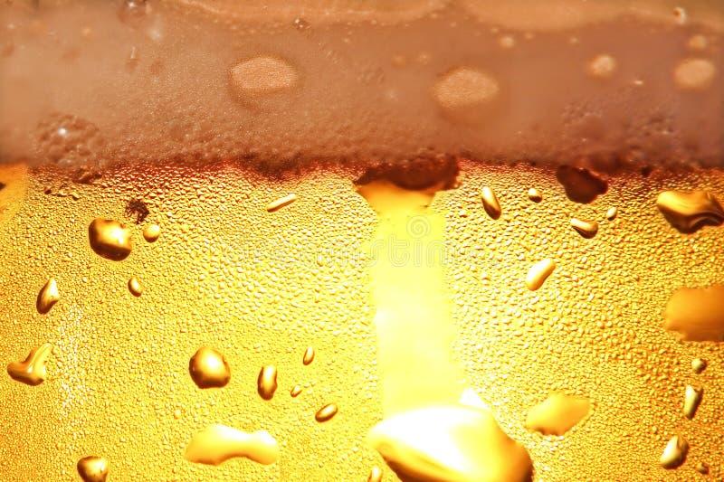 Cerveja com espuma. imagens de stock royalty free
