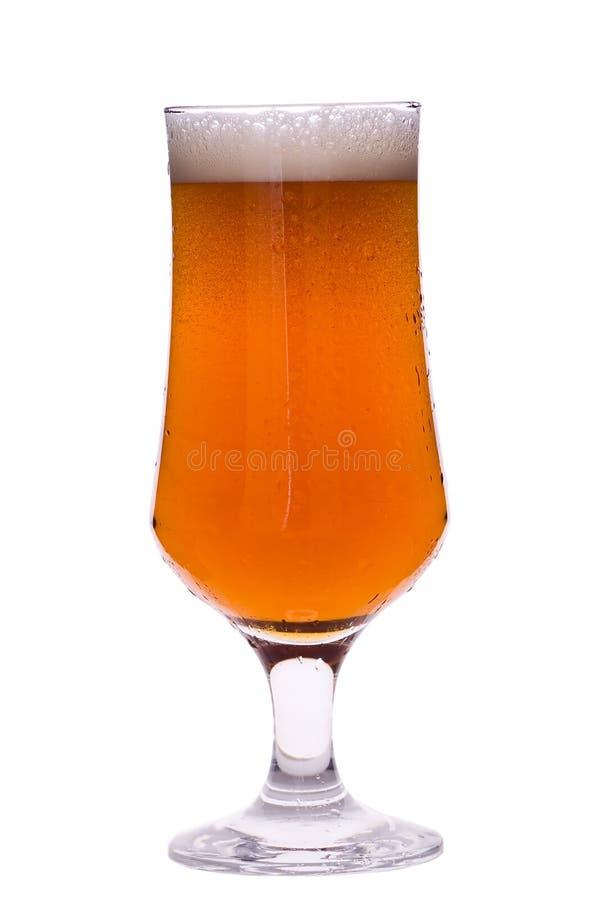 Cerveja com espuma fotografia de stock royalty free