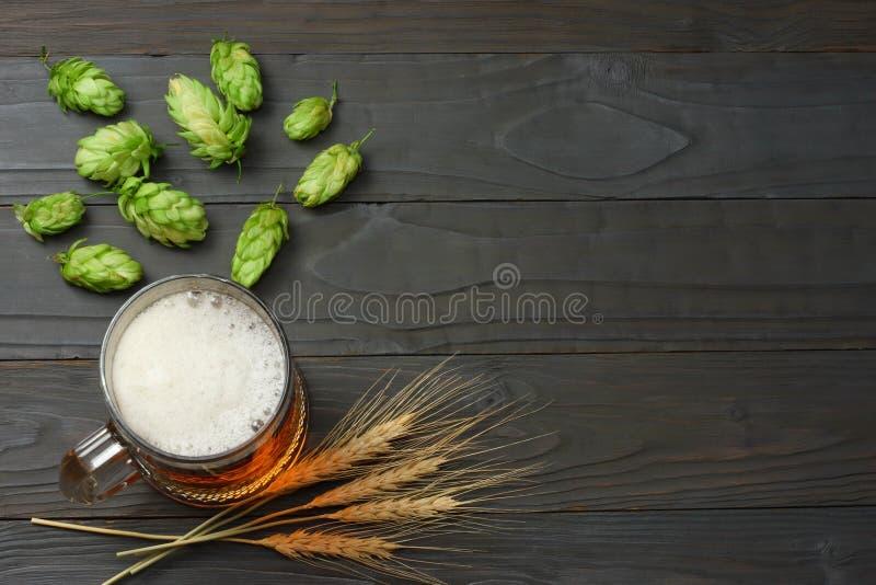 Cerveja de vidro com cones de lúpulo e orelhas do trigo no fundo de madeira escuro Conceito da cervejaria da cerveja Fundo da cer imagem de stock royalty free