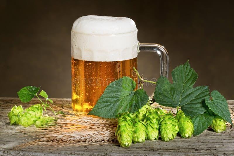 Cerveja e lúpulos imagens de stock royalty free
