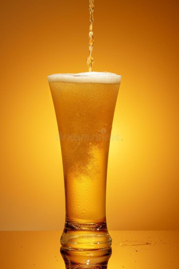 Cerveja em um vidro imagem de stock royalty free