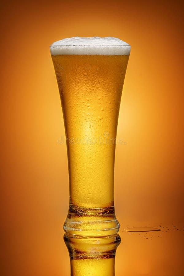 Cerveja em um vidro fotos de stock