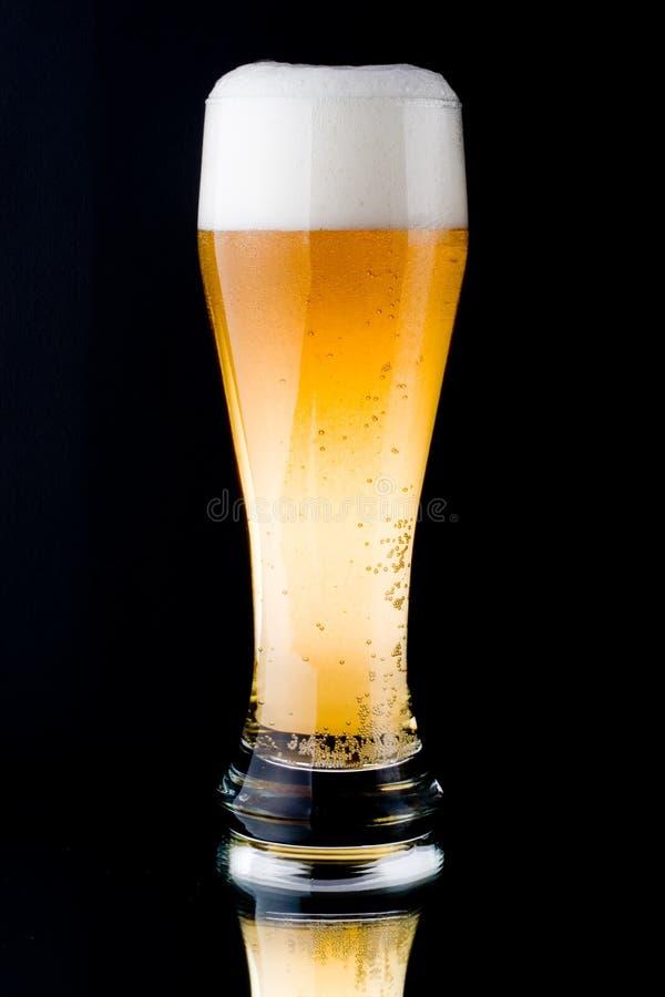Cerveja espumosa fresca imagem de stock
