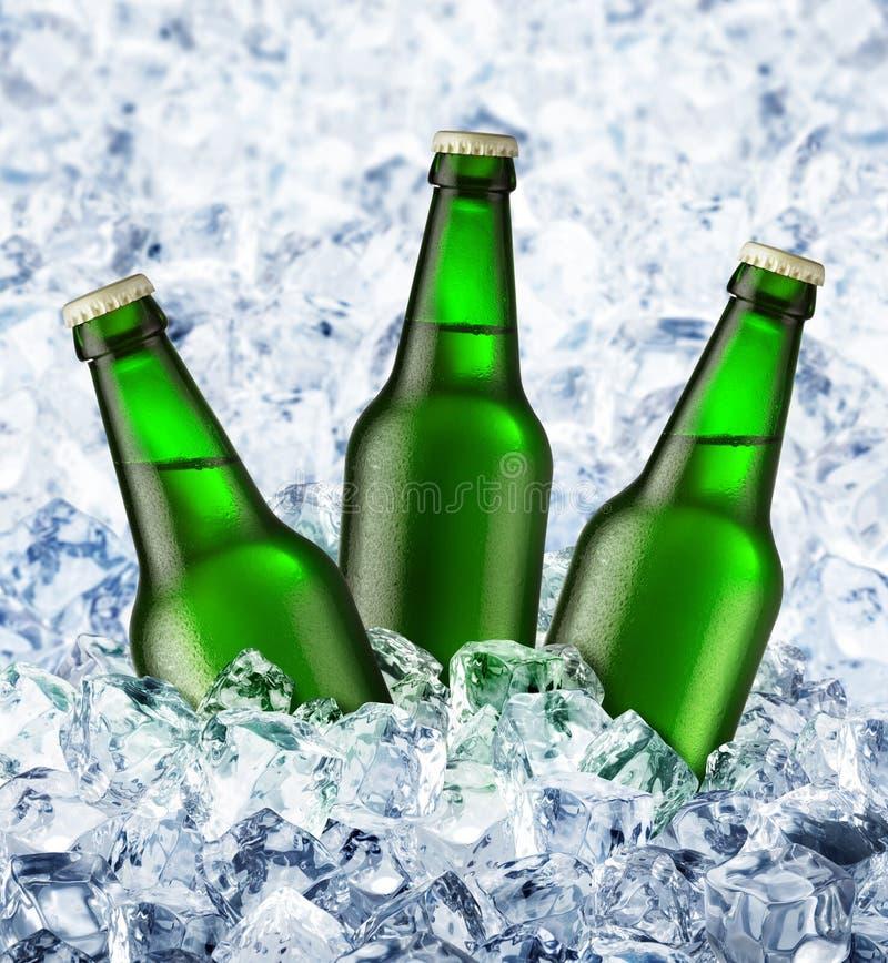 A cerveja está no gelo imagem de stock