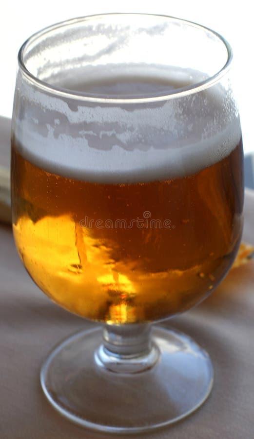 Download Cerveja fria imagem de stock. Imagem de froth, frio, celebration - 113261