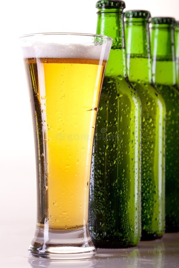 Cerveja refrigerada no branco! imagem de stock royalty free