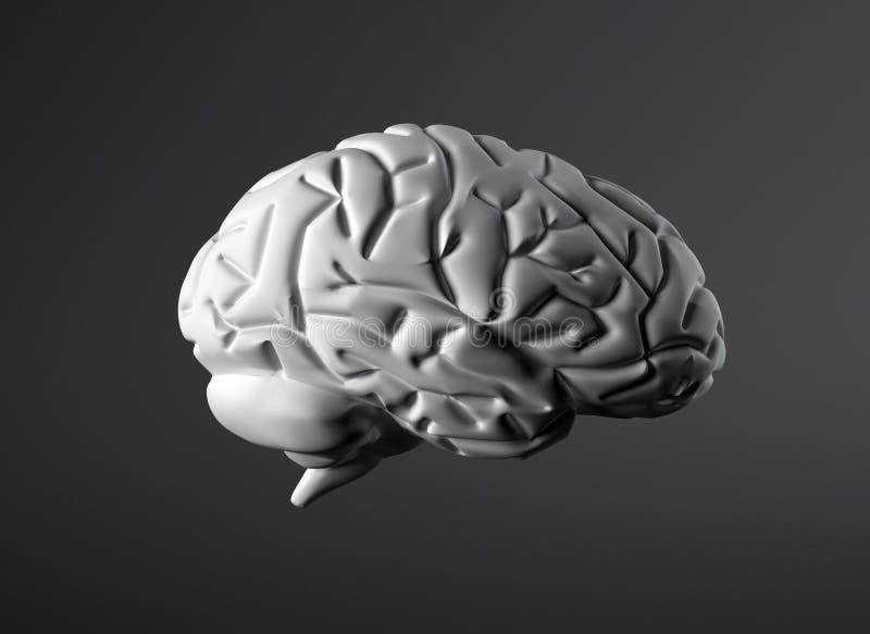 Cervello royalty illustrazione gratis