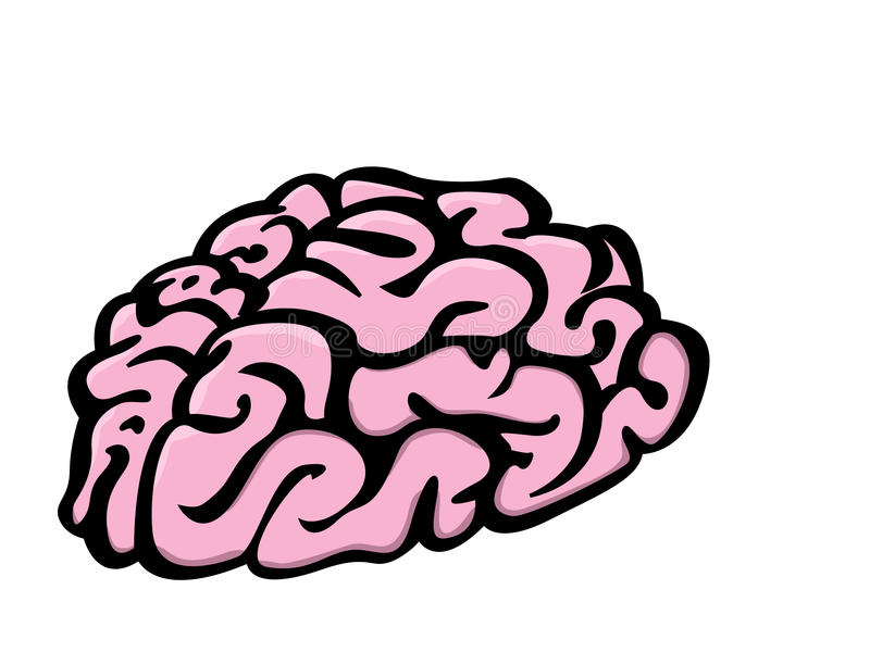 Cervello fotografia stock