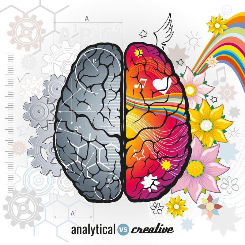 Cervello analitico e giusto sinistro di creatività illustrazione di stock