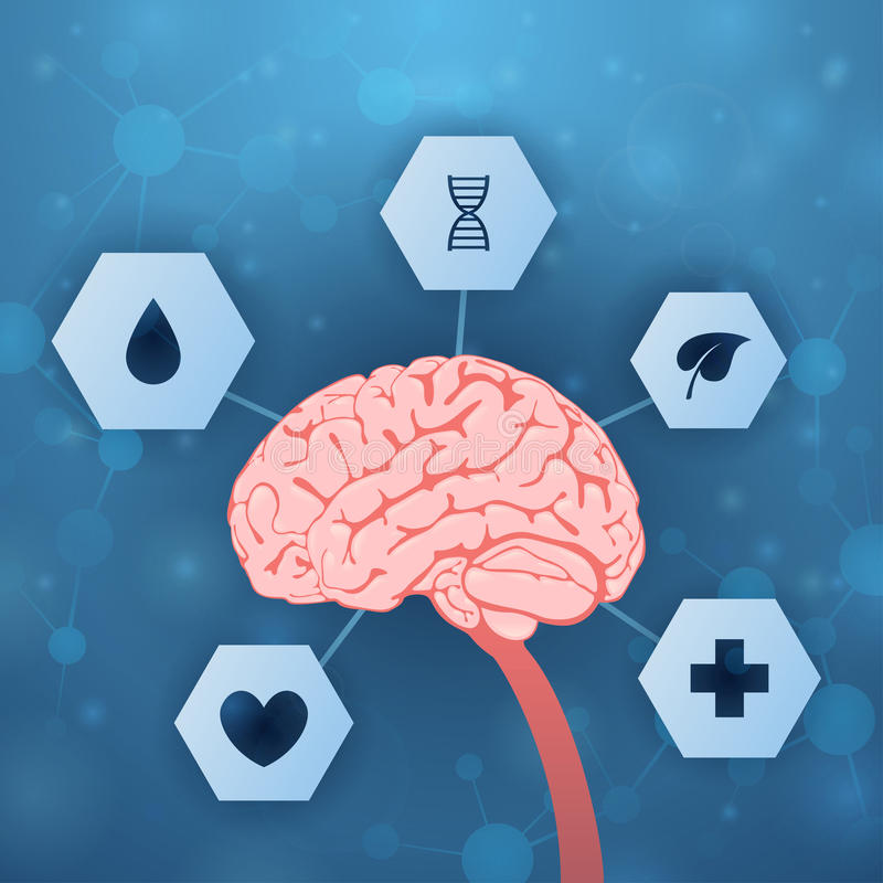 Cervello ed assistenza medica royalty illustrazione gratis