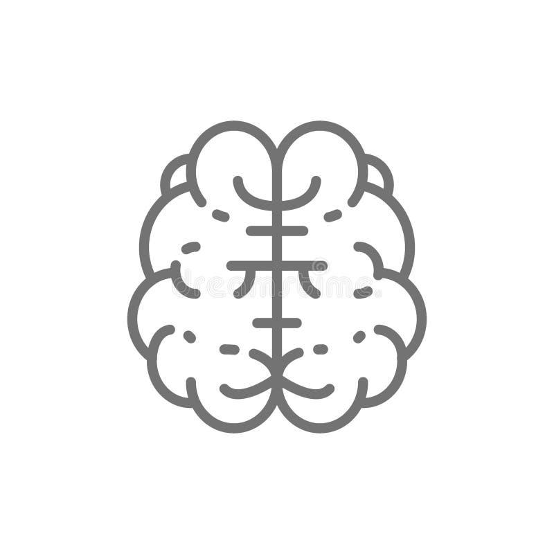 Cervello, mente, intelligenza, linea icona dell'organo umano illustrazione di stock